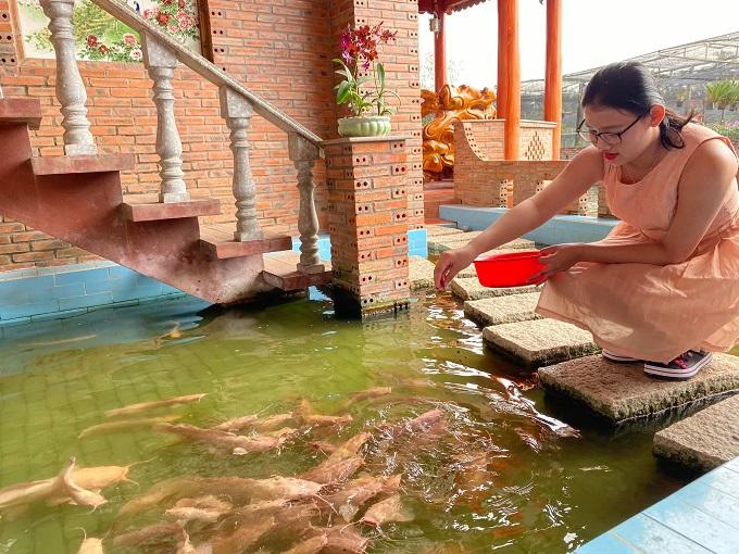Hồ nuôi cá trê trắng tại Điền Lan Thôn Trang