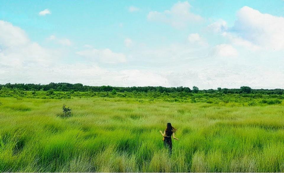Khám phá Khu du lịch sinh thái Cánh Đồng Bất Tận ở Long An