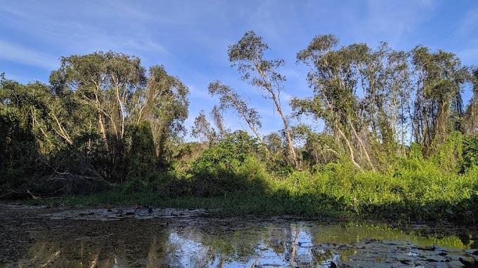 Khám phá hệ sinh thái Động - Thực vật tại KDL Cánh Đồng Bất Tận