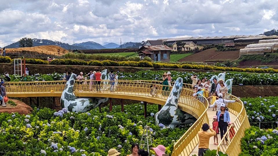 Tour du lịch Đà Lạt Ngàn Hoa - 3 ngày 3 đêm