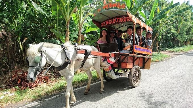 Đi xe ngựa tham quan đường làng tại Cồn Thới Sơn