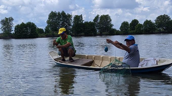 Trải nghiệm giăng lưới bắt cua tại Thạnh Phú - Bến Tre