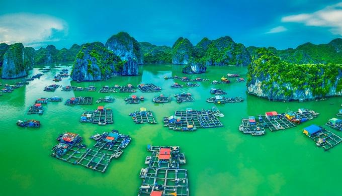 Khung cảnh tuyệt đẹp của Vịnh Lan Hạ nhìn từ trên cao