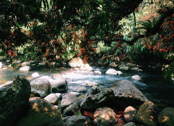 Phong cảnh thiên nhiên đẹp rực rỡ đến mức khó diễn tả