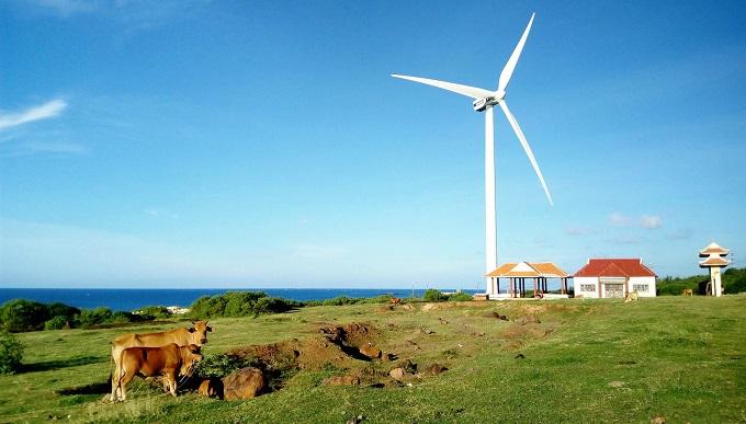 Quạt gió khổng lồ ở Phú Quý – địa điểm check in tuyệt đẹp