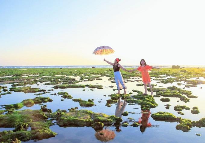 Thỏa sức check-in và khám phá tại Cánh đồng rong biển tại Ninh Thuận