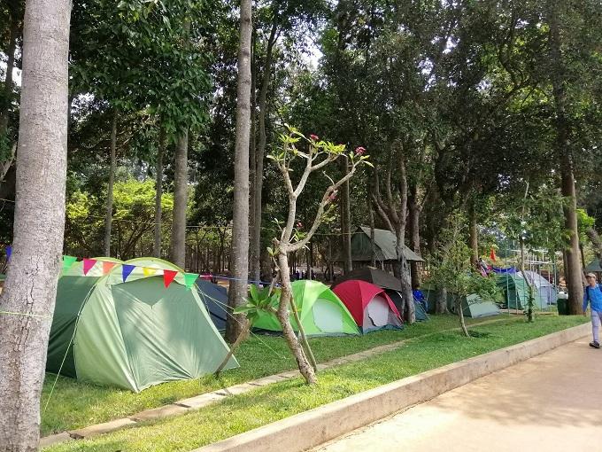 Trải nghiệm các hoạt động cắm trại qua đêm tại khu du lịch