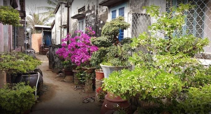 Homestay Năm Sơn - Ba Tri