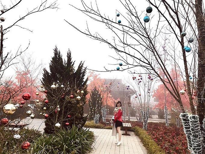 Check-in tại vườn hoa bốn mùa rực đỏ