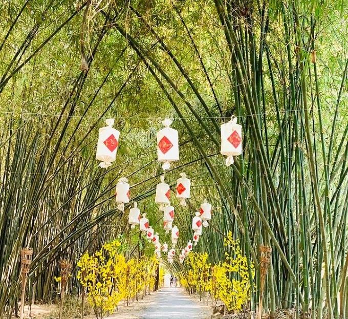 Con đường tre xanh mướt dài vô tận tại Bamboo Garden
