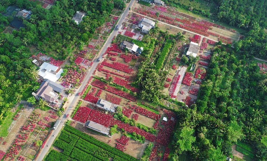 Khám phá Làng hoa giấy Phú Sơn tại Chợ Lách - Bến Tre