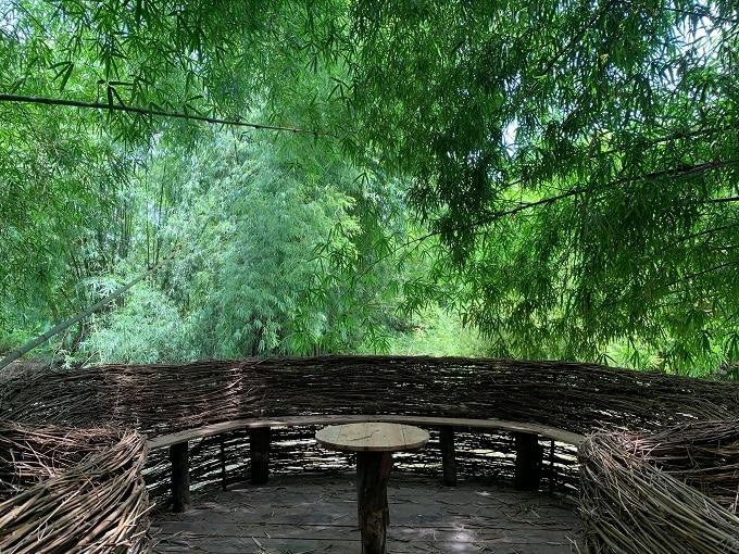 Không gian check-in lý tưởng tại Vườn Tre Hậu Giang
