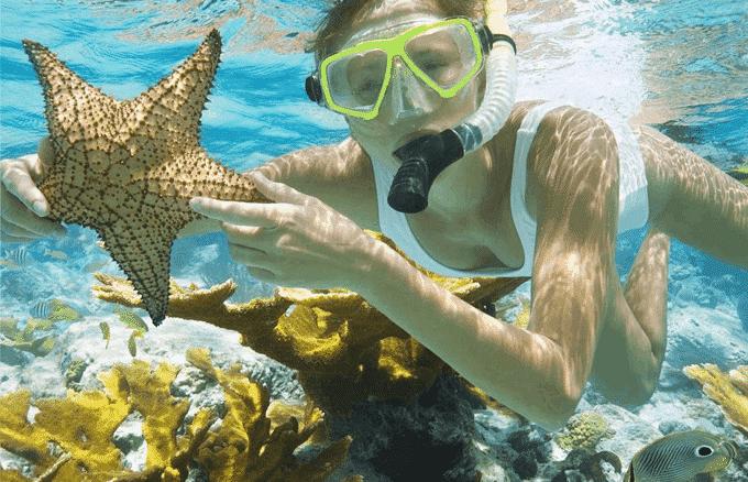 Trải nghiệm lặn ngắm san hô tại Phú Quốc