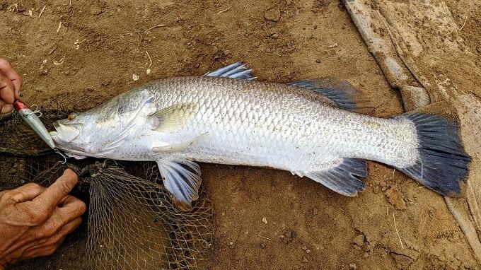 Trải nghiệm câu cá trong đập của người dân