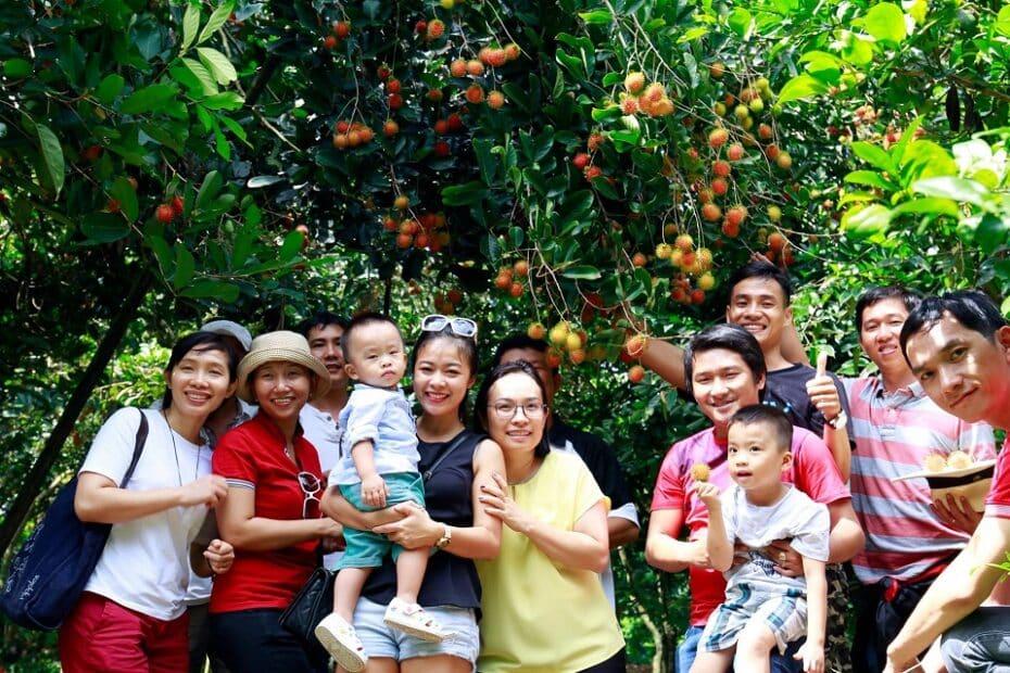 Vườn trái cây Bến Tre - Top những điểm đến HOT nhất
