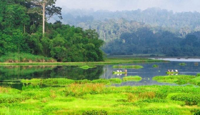 Khu dự trữ sinh quyển Đồng Nai được UNESCO công nhận là Khu dự trữ sinh quyển thứ 580 của thế giới vào ngày 29/6/2011