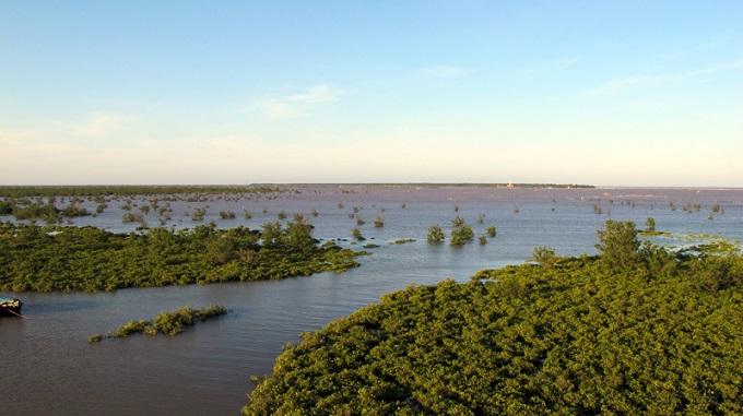 Khu dự trữ sinh quyển châu thổ sông Hồng