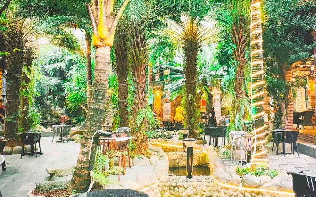 Khu sân vườn phục vụ cà phê, ăn uống khi tham quan căn nhà dát vàng với nhiều cây kiểng độc lạ