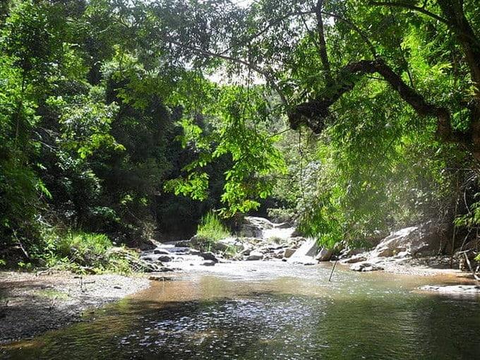 Vườn Quốc gia Chư Mom Ray- Vườn Di sản ASEAN - Kon Tum