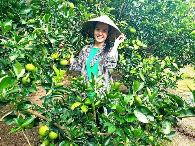 Vườn trái cây tại Cồn Sơn, Bình Thủy, Cần Thơ