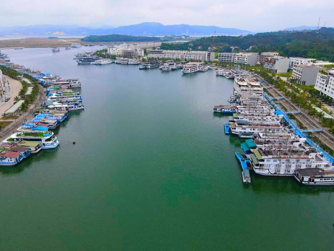 """Hơn 500 tàu du lịch ở Hạ Long (Quảng Ninh) nằm """"đắp chiếu"""" im lìm ven bờ biển vì phải dừng hoạt động phòng COVID-19."""
