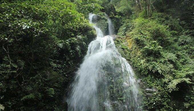 Không gian tự nhiên tuyệt đẹp trong Vườn quốc gia Vũ Quang