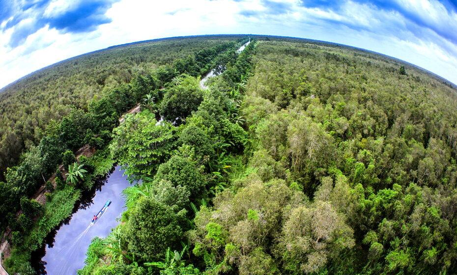 Khu bảo tồn thiên nhiên Lung Ngọc Hoàng – Hậu Giang