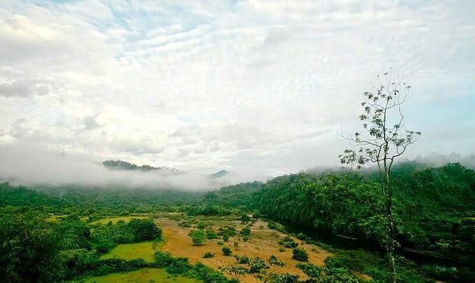 Tháng 11.2020, Trung tâm đa dạng sinh học ASEAN công nhận vườn quốc gia Vũ Quang là Vườn di sản ASEAN.