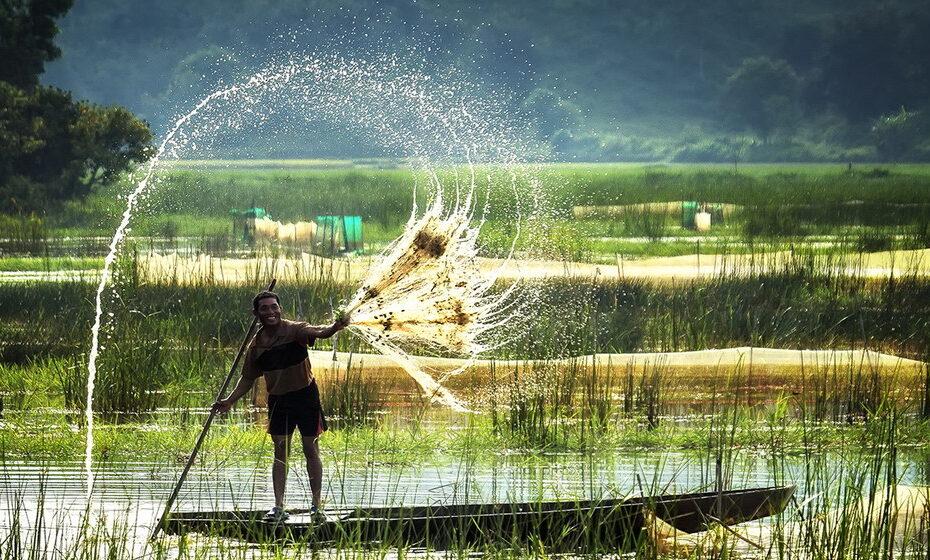 Top 10+ Vườn quốc gia hấp dẫn nhất Việt Nam